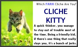 You are the Cliche Kitty!